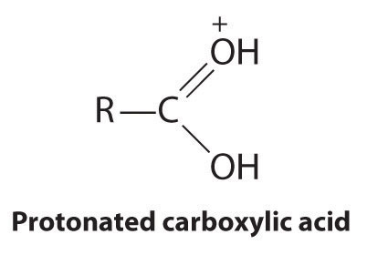 what is carbolic acid and what is its usual application