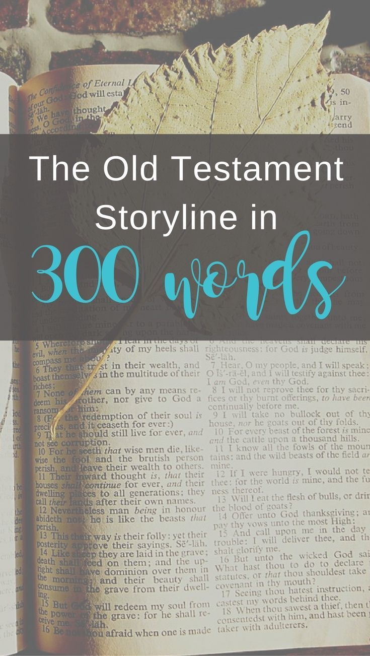 life application bible commentary old testament
